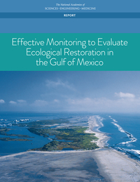 Effective Monitoring to Evaluate Ecological Restoration in the Gulf of Mexico report cover